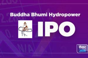 Buddha Bhumi IPO